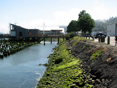 Green Waterside, Astoria, Oregon