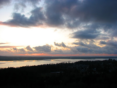 View of Young's Bay and Bridge from the Astoria Column