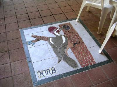 Woodpecker Mosaic, Los Quetzales, Guadalupe, Panama