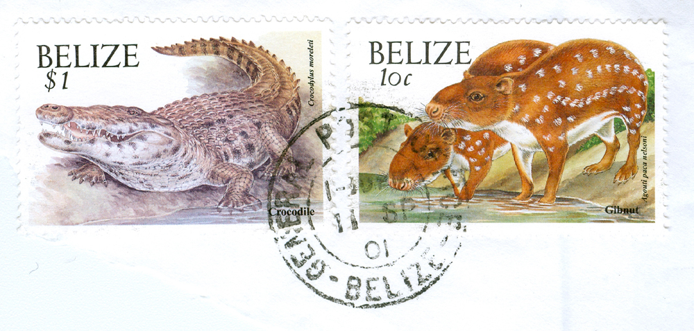 Morelet's Crocodile and Gibnuts (Pacas) on stamps from Belize