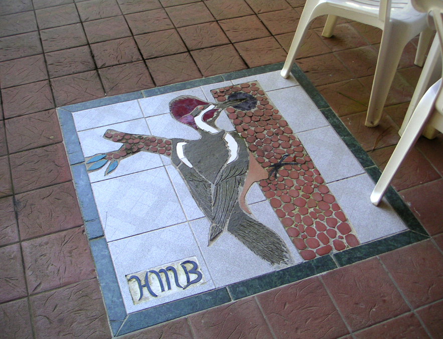 Crimson-headed woodpecker mosaic, Panama