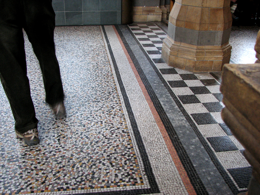 Mosaic Floor of the Natural History Museum