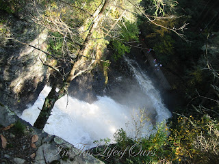 View from the top of the water falls