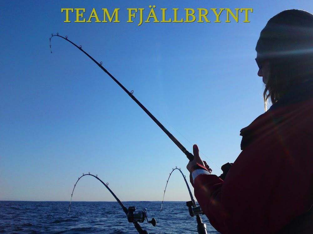 Team Fjällbrynt