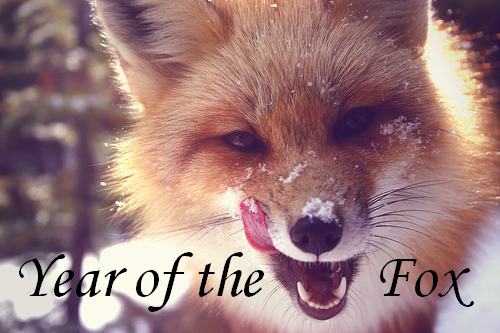 Year of the Fox