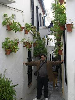 Obiective turistice Andaluzia: Calleja de los Flores Cordoba