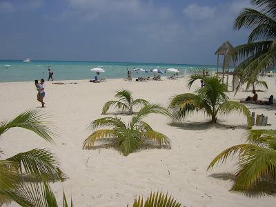 Plaja alba cu palmieri
