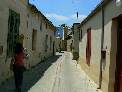 La doi pasi de Linia Verde Nicosia