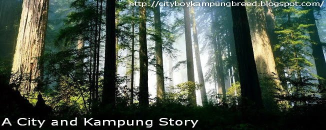 A City and Kampung Story