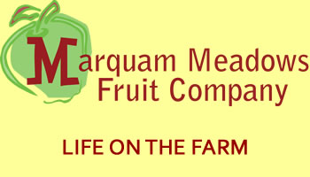 Marquam Meadows Fruit Company