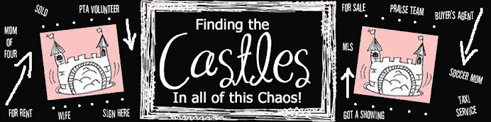 Finding the CASTLES in all of this CHAOS!