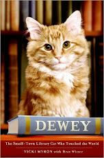 DEWEY, a small town cat