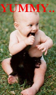 funny photos: Baby eating cat tail.搞笑图片:婴儿吃猫尾!!