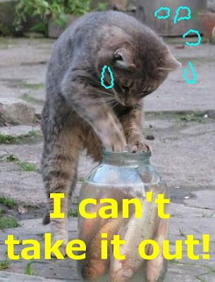 Funny Pictures: Cat getting a fish