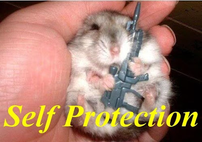 Funny Pictures: Armed hamster