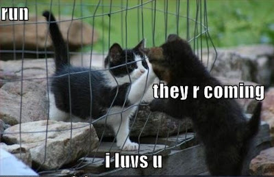 Funny Pictures: Love you goodbye