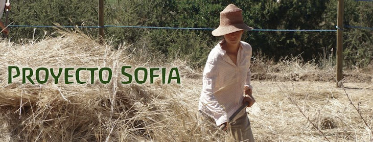 Proyecto Sofia