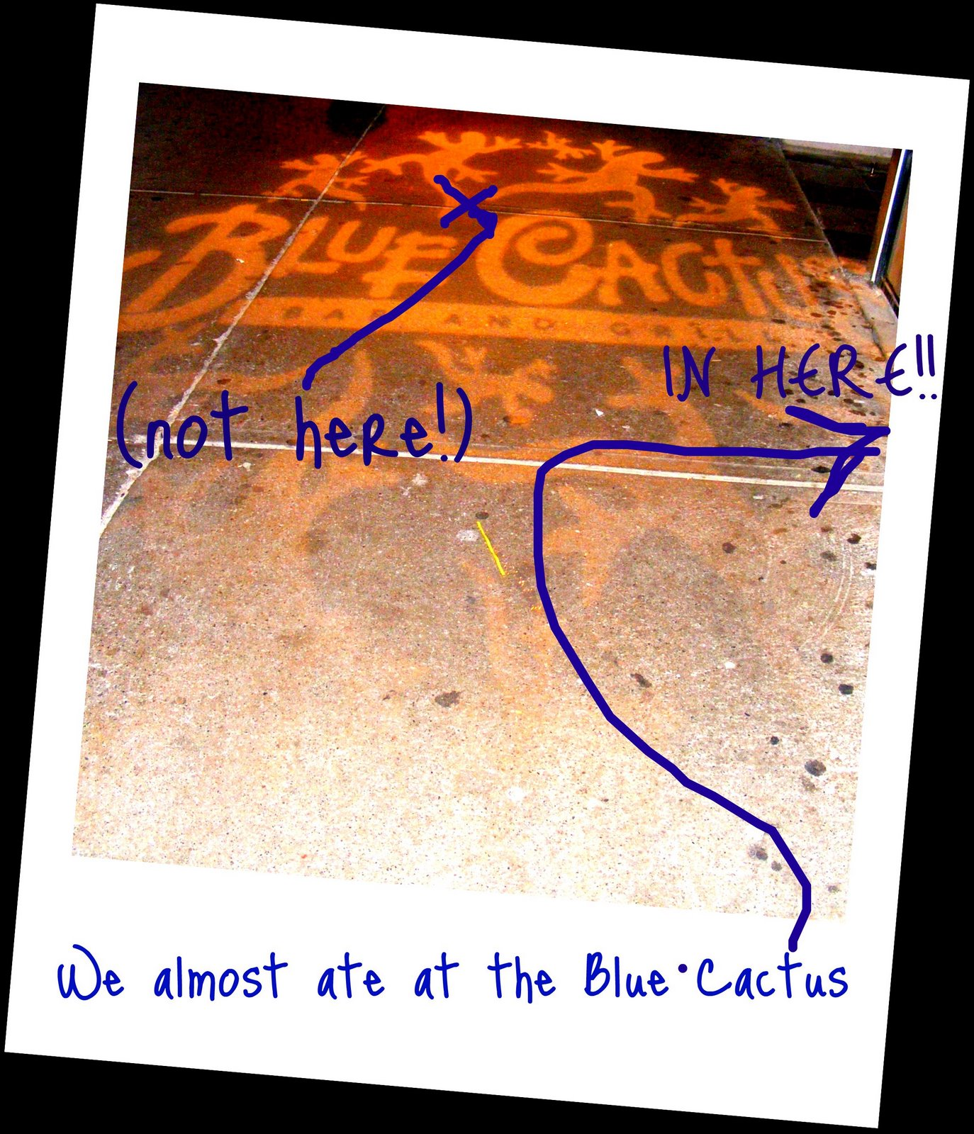 [Blue+Cactus.jpg]