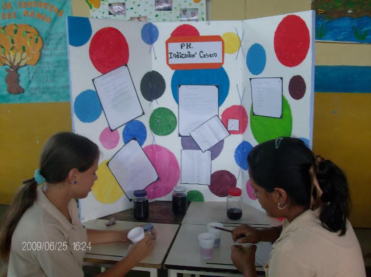 FESTIVAL DE CIENCIAS 2009