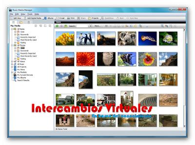 Roxio Creator 2010 v1.2.1 ML (Español),