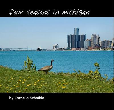 four seasons in michigan