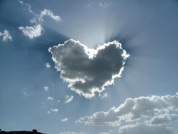 amore cuore. amore cuore.