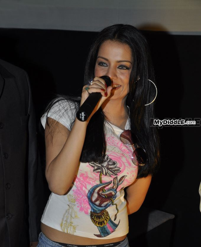 Images Of Hot Pics Celina Jaitley Shows Panty