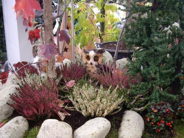 Diseno de jardines 3d las plantas en oto o dise o y - Diseno jardines 3d ...