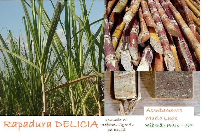 Rapadura Artesanal- Produto da Reforma Agraria