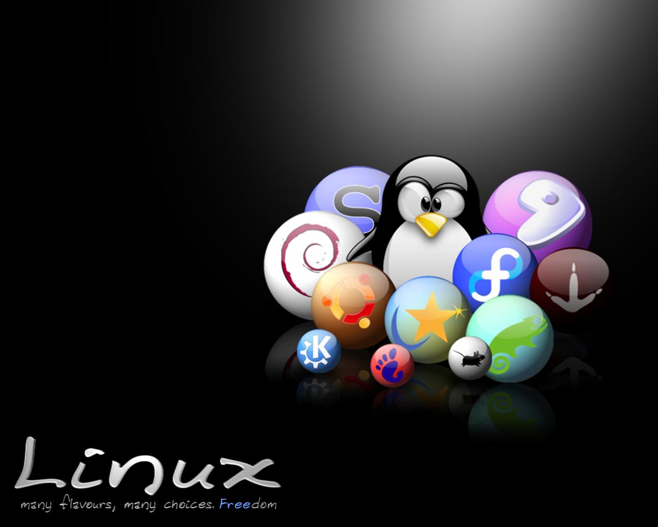 http://3.bp.blogspot.com/_Dob8rJ0PLZI/TPghP1TDvgI/AAAAAAAAAB0/SGhUkaareWc/s1600/many_flavours_many_choices_Freedom.png