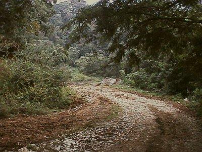 [dirt+road.jpg]