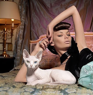 gato y una mujer en habitación lujosa