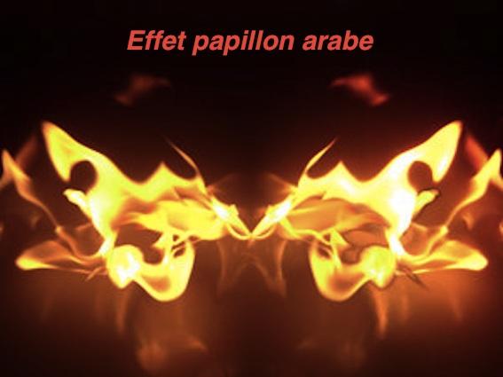 PHOTOS ET EMOTIONS - Page 2 Effet-papillon-arabe-papillon-de-feu-punkek_Fire_butterfly_by_frenzyfyta