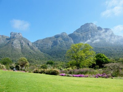 Biomes Of Africa. five of South Africa#39;s six