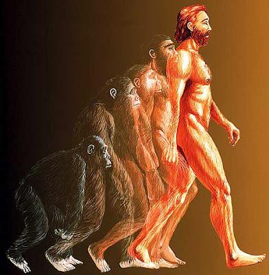 วิวัฒนาการของสิ่งมีชีวิต (2)