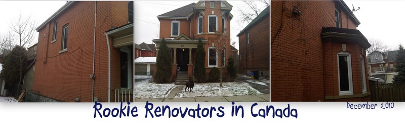 Rookie Renovators in Canada