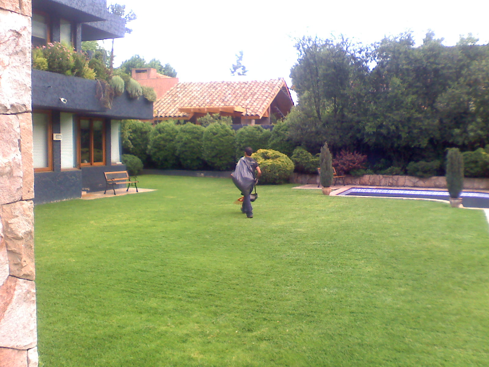 Darrigrandi y simunovic jardineria semillas o cesped - Cuando plantar cesped ...