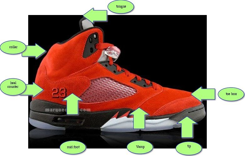 My Island School Blog Parts Of Sneaker