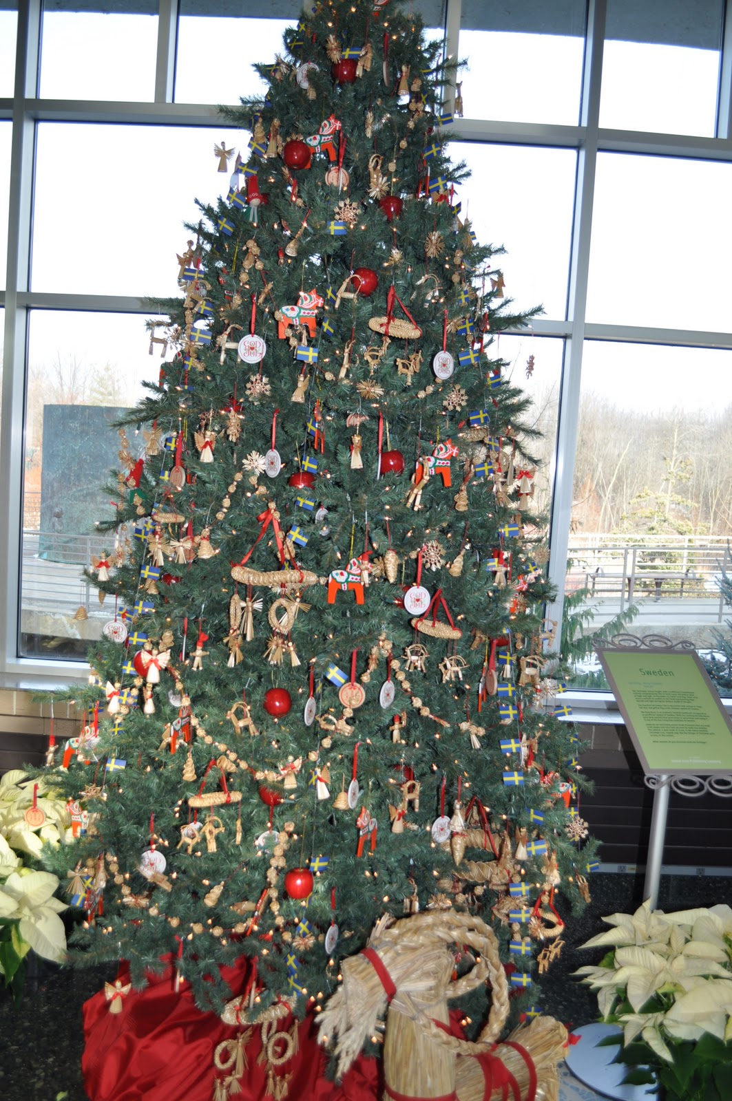 Michigan cottage cook christmas trees from south korea netherlands
