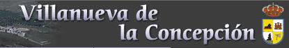 Villanuevaconcepcion.es