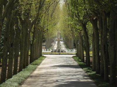 Jardines del Campo del Moro  Campo+del+Moro+03