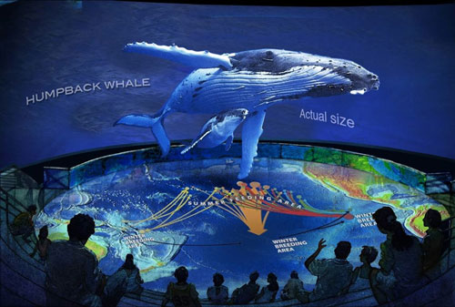Free Admission To Aquarium Of The Pacific Hurry Respond