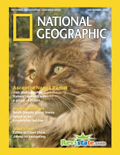 NATIONAL GEOGRAPHIC concede el premio al mejor gato del año