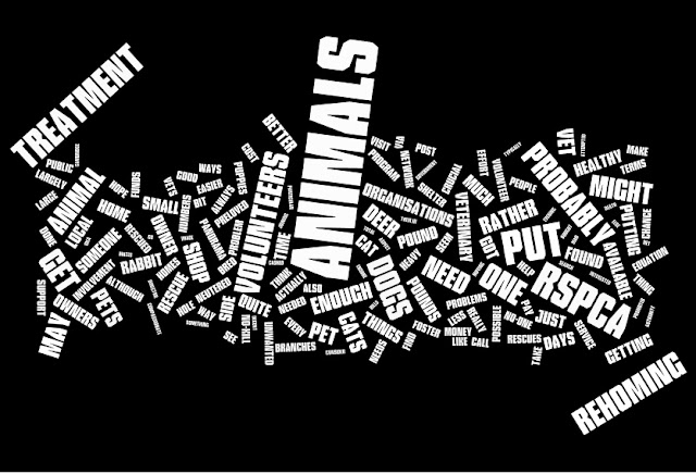 Wordle: RSPCA + Volunteers = ANIMALS getting veterinary Treatment and Rehoming
