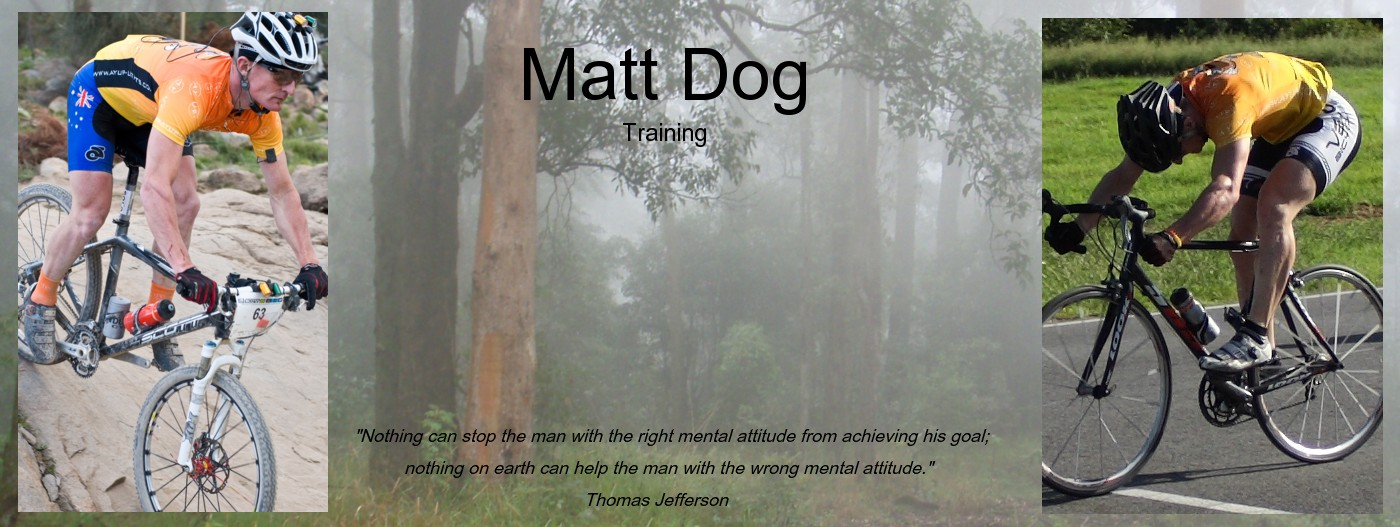 Matt Dog Training