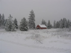 Our farm in winter