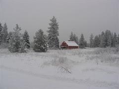 Our farm in winter