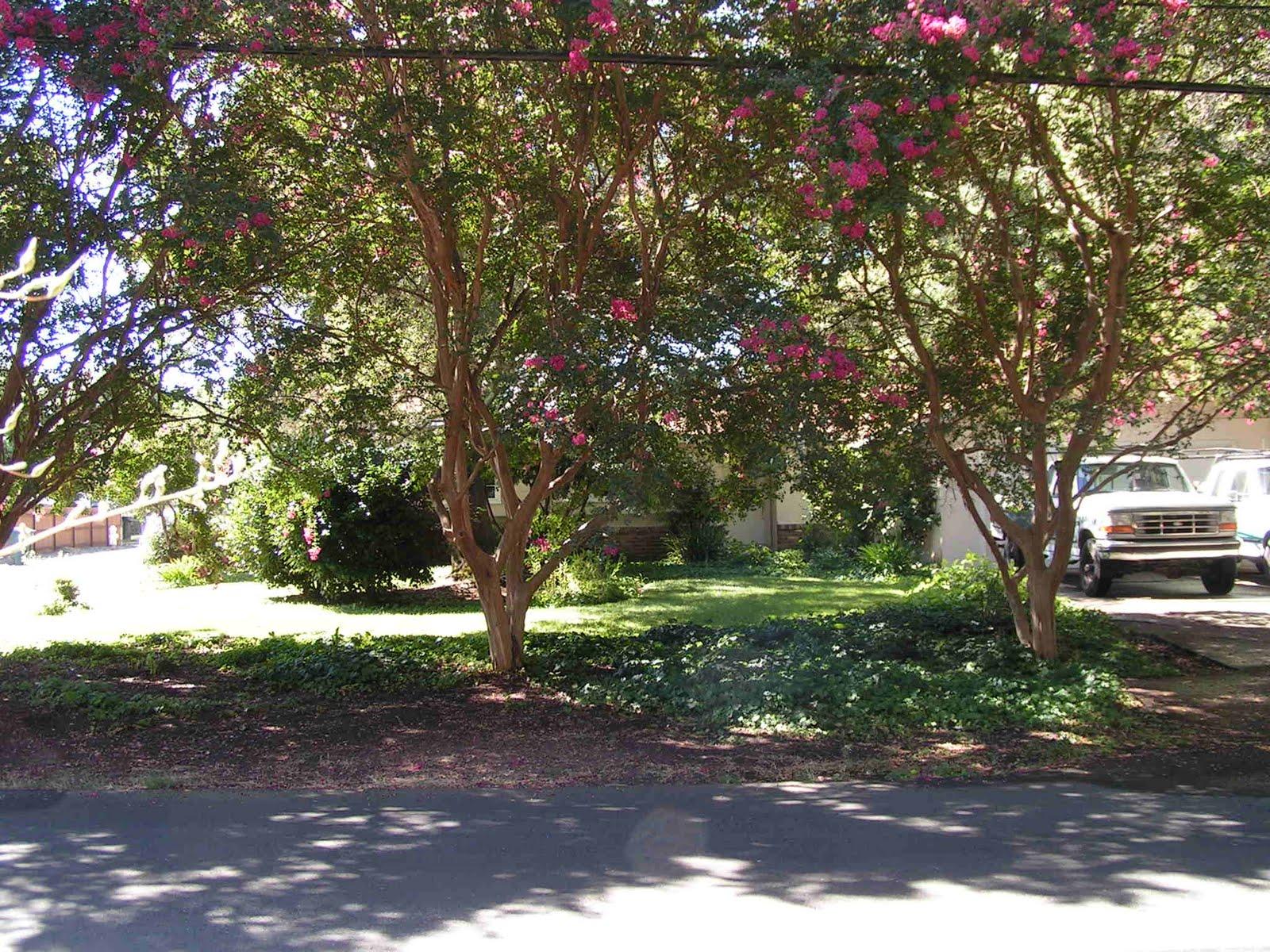 5582 Olive Ranch Rd. Granite Bay, CA
