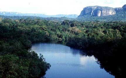 Parque el Chiribiquete
