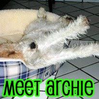 Meet Agatha & Archie